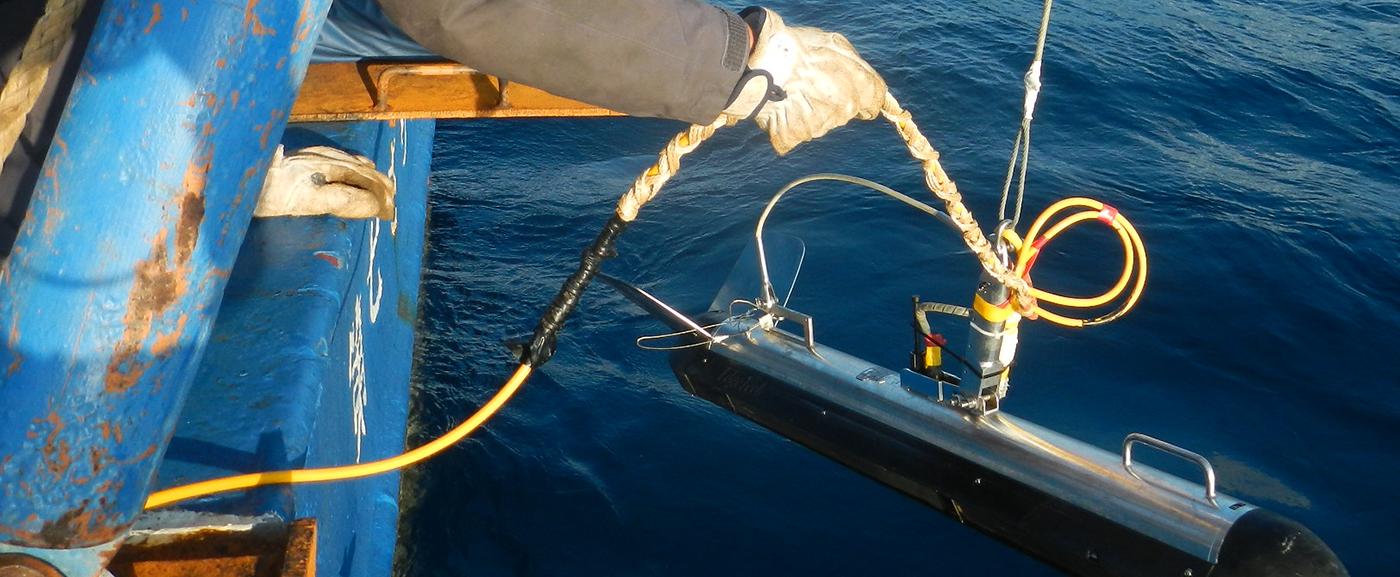 水中構造物調査